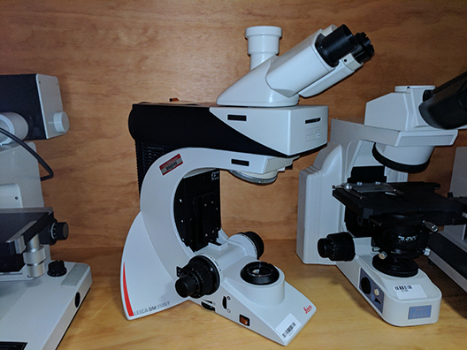 Leica DM 2500P Compound Microscope