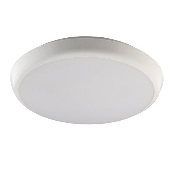Surface-Mount Ceiling Light