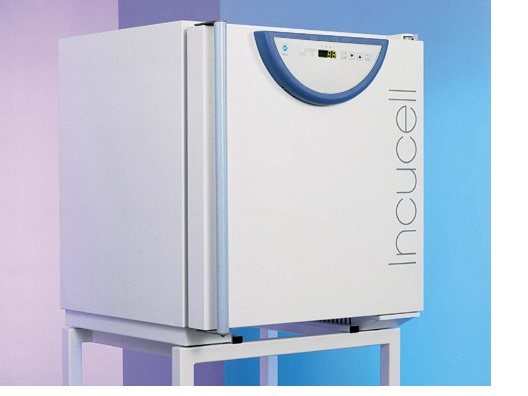 BMT Incucell 55 *NEW* Incubator Oven`